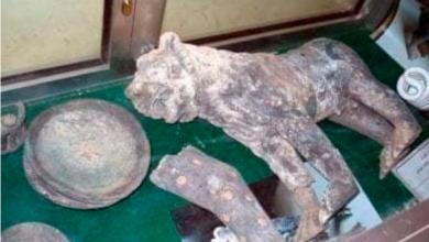 """صورة قطع اثرية ثمينه تتعرض للسرقة في """"متحف ظفار"""" في محافظة إب"""