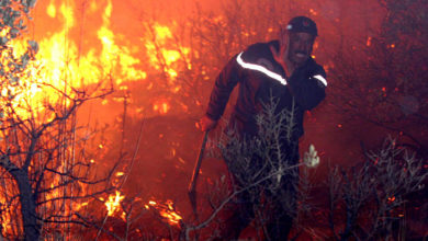 """صورة مشاهد مروعة.. ارتفاع عدد قتلى الحرائق في الجزائر إلى ما يقارب 100 بينهم جنود """"تفاصيل الكارثة المرعبة"""""""