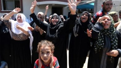 صورة فلسطين والصراع من أجل القضية والهوية
