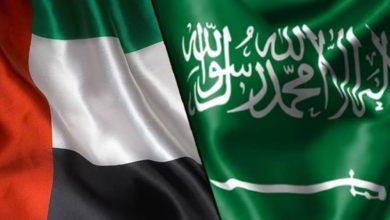صورة الإمارات تدين محاولة الحوثي استهداف السعودية بطائرات مفخخة