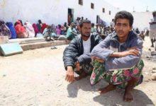 صورة دفعة جديدة من اللاجئين اليمنيين تصل ميناء بوصاصو الصومالي