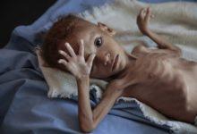 صورة الغذاء العالمي يتحدث عن 16مليون يمني يكافحون من أجل الحصول على الطعام في جلسة لمجلس الامن