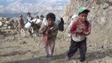 صورة المعابر مدخل يمني للسلام