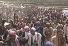 صورة الشرعبي يفضح الاخوان.. معركة وهمية في تعز انتهت بسيطرة الحوثي واستلام 5مليار ومساندة مأرب بالهجوم على أبين