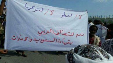 صورة سقطرى وميون وحملة الإخوان