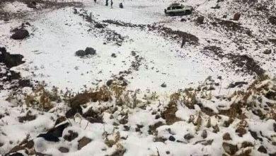 صورة شاهد الثلوج تكسي جبل النبي شعيب بصنعاء.. صور