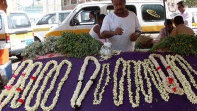 """صورة رفيق الفاتنات بليالي الفرح.. """"الفل"""" هدية الحب العتيقة في اليمن"""