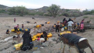 صورة شاهد بالفيديو.. معاناة منطقة في لحج جنوب اليمن ومشقة ومخاطر البحث عن مياه الشرب والتي تسببت بوفاة نساء وأطفال
