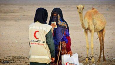 صورة الاتحاد: الإمارات تنسق مع المنظمات الدولية لضمان إيصال المساعدات للمتضررين في اليمن