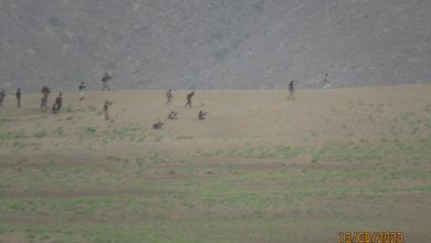صورة مصرع وإصابة 24 مسلحا حوثيا في كمين محكم بجبهة المخدرة