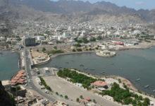 صورة منع دخول مادة الزنجبيل المجفف من ميناء عدن.. تعرف على الأسباب