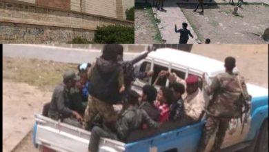 صورة جيش المقر و من قرح يقرح