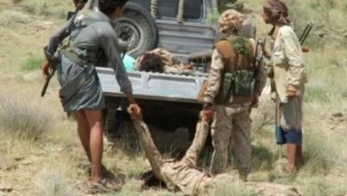 صورة مصرع 43 حوثيا غرب مأرب..المليشيات تتكبد خسائر فادحة في الارواح والمعدات