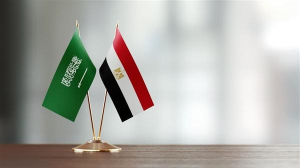 صورة بيان سعودي مصري حول باب المندب.. هل تنشر مصر قواتها البحرية في المياه الإقليمية اليمنية