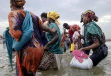 صورة الهجرة الدولية: وصول أكثر من 37 ألف مهاجر أفريقي الى اليمن خلال 2020