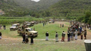 """صورة يحدث في اليمن فقط.. خمسة قتلى وعدد من الجرحى في حرب طاحنة ونزاع دامٍ والسبب """"شجرة"""""""