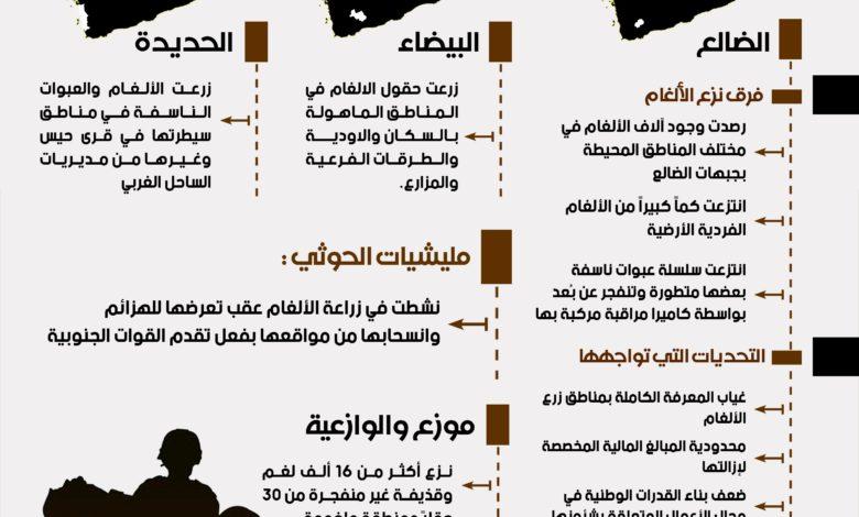 صورة الألغام.. إرهاب حوثي ينهش أجساد اليمنيين وجرائم حرب لا تتوقف