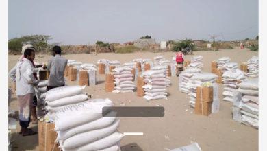 صورة ابين : الصليب الأحمر يستهدف 10 آلف مواطن بمواد غذائية