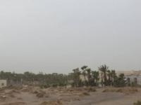 """صورة """"المشتركة"""" تُدَمِّر مرابض مدفعية حوثية استهدفت القرى السكنية في الدريهمي"""